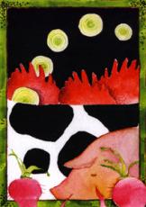 imagen del catalogo